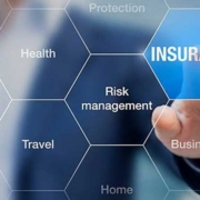 insurance 1 1